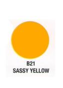 Verity Nail Polish Sassy Yellow B21