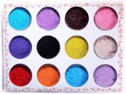 12 colour Salon Plush Powder Dust-3D Velvet flocking powder for Nail Art manicure