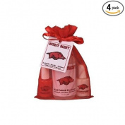 Nail Polish Arkansas Razorbacks Team Spirit Paint