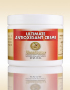 Ultimate Antioxidant Creme 120ml