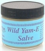 WiseWays Herbals - Wild Yam-E Salve 60ml - Salves for Natural Skin Care