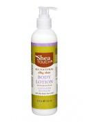 Shea Touch - All Natural Silky Shea Body Lotion (8 Fl Oz) - Lavender Blossom