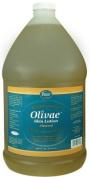 Olivae Skin Lotion & Massage Oil, Gallon