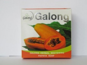 The Herbal Papaya Soap