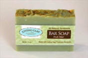 Fresh Mint & Calcium Bentonite Clay Soap - 1 Bar - Living Clay Exfoliant Skin Care Soap For Oily Skin - Herbal Face & Body Soaps