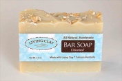 Unscented Oatmeal & Calcium Bentonite Clay Soap - 1 Bar - Living Clay Exfoliant Skin Care Soap For Oily Skin - Herbal Face & Body Soaps