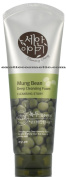 **New** Cleansing Story Natural Deep Facial Foam Cleanser - Green Gramme