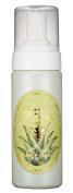 Skin Food ALOE VERA Aloe Vera Bubble Cleanser 160ml/Made in Korea