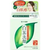 Rohto Hada Labo White Tea Facial Washing Soap