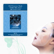 Natural Beauty EGF Essence Full Face Mask 10 Pcs
