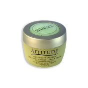 Attitude Line Organic Green Apple Mask