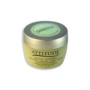Attitude Line Organic Green Apple Mask