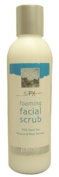 Dead Sea Foaming Facial Scrub 210ml