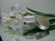 Intensive Night Time Skin Brigtening Cream - An Ultimate Healthy Radiant Skin From the Inside Out with Ancient Natural Herbal Healing Miracles
