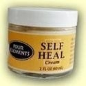 Four Elements Self Heal Moisture Cream Creams