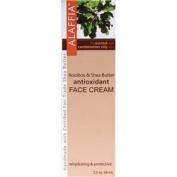 Alaffia - Rooibos & Shea Antioxidant Face Cream, 70ml cream