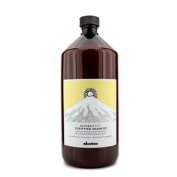 Natural Tech Purifying Shampoo (For Scalp with Oily or Dry Dandruff), 1000ml/33.8oz