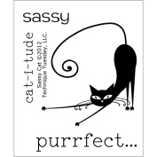Technique Tuesday Clear Stamps, Sassy Cat