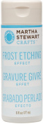 Plaid-Craft MS32202 Martha Stewart Frost Etching Effect-6 Ounces