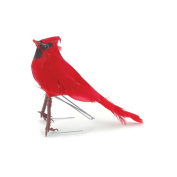 Feather Birds 13cm 1/Pkg-Red Male Cardinal