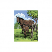 Junior Small Paint By Number Kit 22cm x 30cm -Mare & Foal