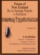 Carabidae: (Insecta