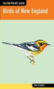 Falcon Pocket Guide