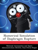 Numerical Simulation of Diaphragm Rupture