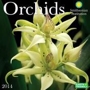 2014 Orchids