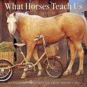 What Horses Teach Us Mini Wall Calendar