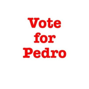 Vote for Pedro Bib