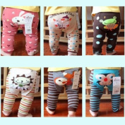 Wrapables Baby & Toddler Leggings, Accordion Frog - 6 to 12 Months