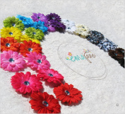 Ema Jane 28 Assorted 'Ema Jane' Boutique Quality Small Gerber Daisy (Double Matching Colours, 2 Sets of 14) Flower Hair Clip Bows - Infants, Baby, Toddlers, Youth, Girls - Hair Clip Attaches to Headbands, Beanies, or Hair