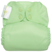 BumGenius Freetime All in One Cloth Nappy - Snap - Grasshopper - One Size