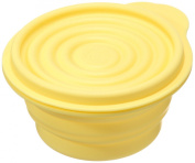 Silicone Large Foldable Storage Bowl with Cover