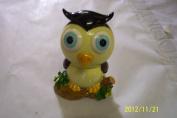 Owl Bank 15.2cm Big Eye