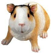 Guinea Pig Money Bank