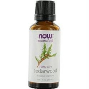 ESSENTIAL OILS NOW by