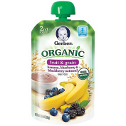 Gerber Organic 2nd Foods Pouches Banana Blueberry Blackberry Oatmeal - 100ml