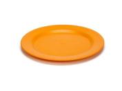 Green Eats Plates - 2 per set - Orange