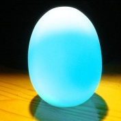 Colour Changing LED Egg Baby Kid Mood Lamp Night Light Children