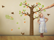 Large Tree Height Measurement Growth Chart with Quote Wall Sticker Decal for Kids Room Measures 150cm or 1.52m