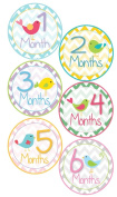 Baby Girl Bird Monthly Onesie Sticker with Chevron Pattern - Waterproof and Durable - Includes 1-12 Month Stickers