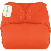 bumGenius New Elemental One-Size All-in-One Nappy