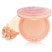 Powder Compact Foundation SPF 22 PA++ - # 100 (Alabaster), 9g/10ml