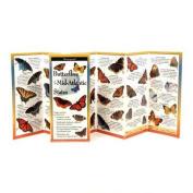 Butterflies of the Mid-Atlantic