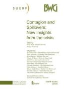 Contagion and Spillovers
