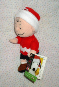 Rare! Peanuts Kohl's Charlie Brown Plush Winter Bean Bag Kohls by Applause