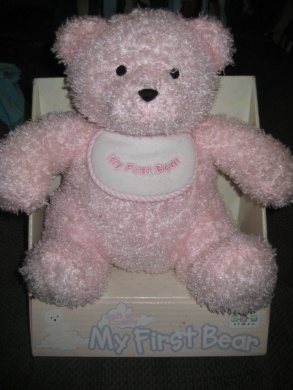 Baby's First Teddy Bear (Pink)