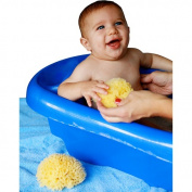 Baby Buddy Natural Bath Sponge, Sea Wool